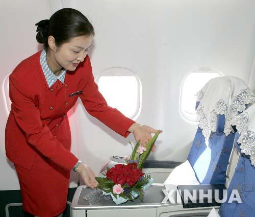 组图:亲民党大陆访问团专机上的湘妹子