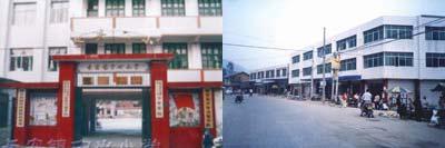 魅力名镇:广东东莞市长安镇――经济强镇
