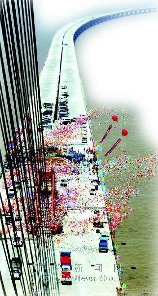 海湾大桥不误红岛蛤蜊上餐桌 建设重视环保