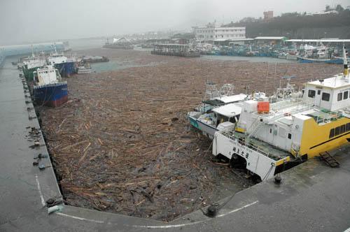 台风过后浮木堵港千余游客滞留台湾绿岛(图)