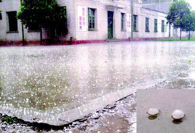 冰雹昨日袭咸阳(图)