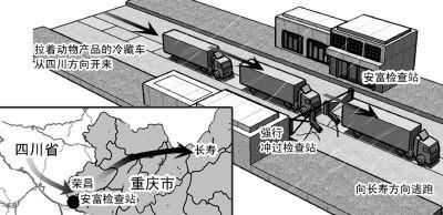 四川肉类冷藏车不顾检查人员阻拦强行进入重庆