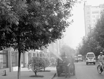园林工人对路旁的树木喷药除虫(图)
