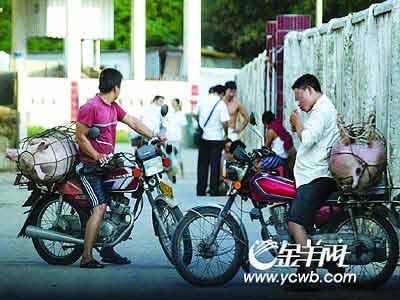 暗访广州死猪回收流程:肉联厂违规自行处理死猪