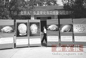 北京人头盖骨失踪64年搜寻内幕