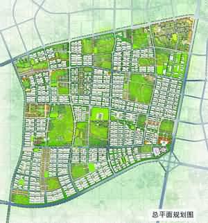 苗木基地规划方案