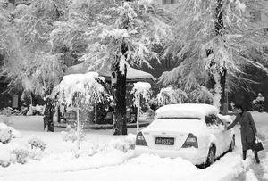 延边暴雪最深厚达半米