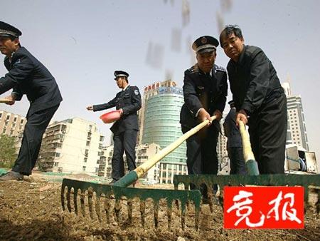 北京遭遇今年第11次扬沙待建工地种小麦防沙