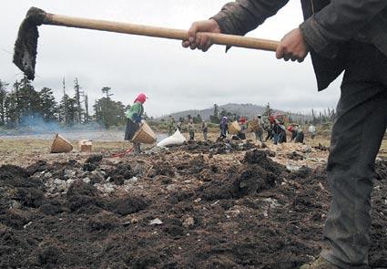 13名藏民无偿清理无极剧组留在天池的垃圾(图)