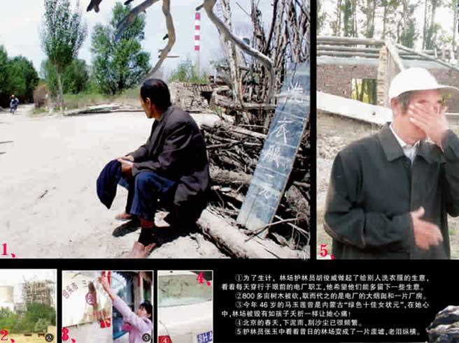 北京沙尘暴源头近千亩林地惨遭砍伐