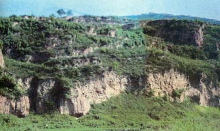 1556年陕西华县地震