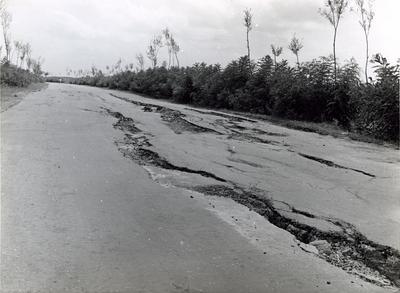 资料图片:地震现象――地裂