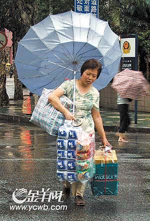"""""""派比安""""携狂风暴雨造成广州市内多处意外"""