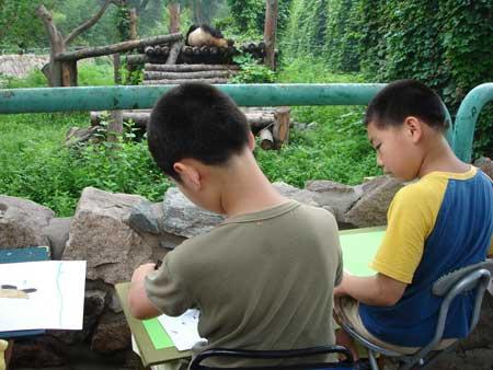 """""""我眼中的大熊猫""""青少年绘画活动 8月11日在北京动物园熊猫馆举行."""