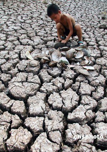 重庆全力解决特大干旱灾区饮水困难