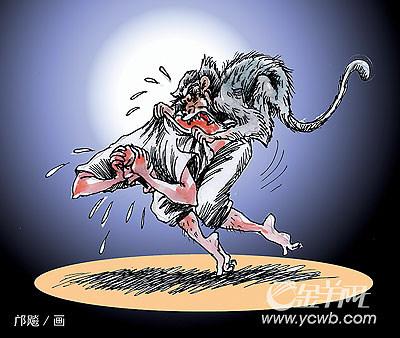 猴子大笑的简笔画