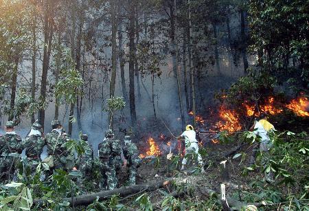 重庆渝北区发生森林火灾过火面积近1000亩(图)