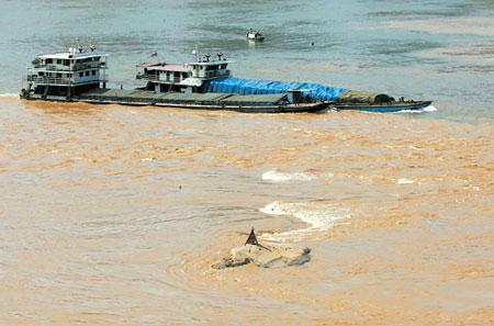 重庆两江水位今涨3米冲来上游污染物(图)