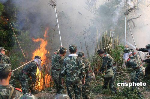 重庆森林火灾明火全部扑灭未发生重大人员伤亡