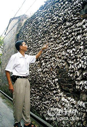 10万蚝壳一堵墙