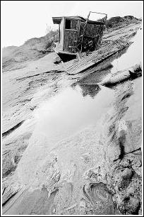 非法挖沙不止黄河湿地遭破坏(图)