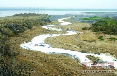洞庭湖遭遇严重干旱生态环境日益恶化(组图)