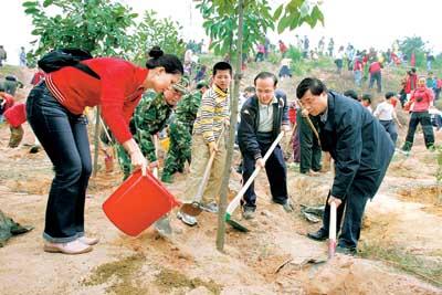 百个家庭义务植树