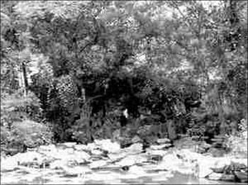 安徽黄山市金瓶梅遗址公园黄金周开张遭冷遇