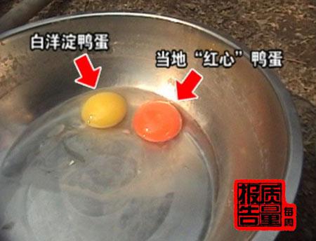 河北养鸭场饲料添加苏丹红所产鸭蛋进北京销售