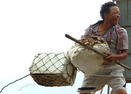 图文:渔民从渔排上紧急转移上岸