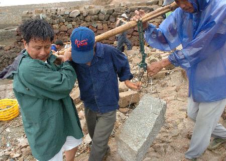 图文:养殖场党支部书记带领村民加固海堤