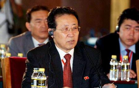 图文:朝鲜代表团团长外务省副相金桂冠在发言