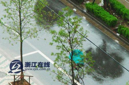图文:台风来临前的台州街道