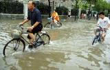 图文:上海市区骑车人在积水中艰难行进