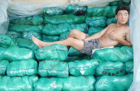图文:台风过后杭州菜市供过于求
