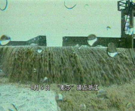 """浙江经受台风""""麦莎"""":防范得力人员伤亡极少"""