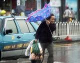 图文:行人撑着伞艰难行走
