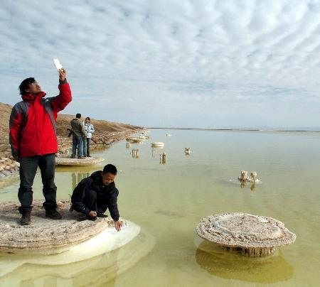 组图:青海盐湖盐花绽放每年引来数万名游客