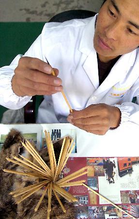 图文:中国用唐卡绘制格萨尔史诗(3)