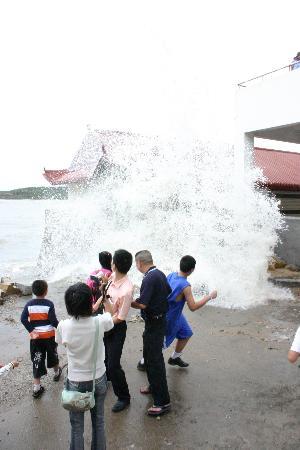图文:游人在莆田市湄洲湾岸边观看大风掀起的巨浪