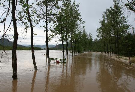 图文:暴雨袭击浙江瑞安一些路段被雨水淹没