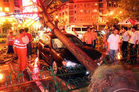 图文:台风龙王登陆福建泉州市狂风肆虐