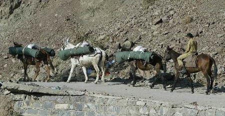 组图:巴基斯坦强烈地震后灾民等待救援