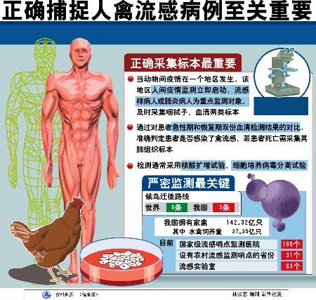 图文:图表:(关注禽流感)正确捕捉人禽流感病例至关重要
