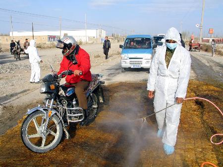 图文:新疆泽普县乌鲁木齐县发生禽流感疫情