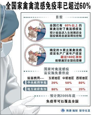 图文:全国家禽禽流感免疫率超过60%