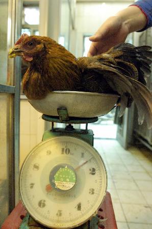 图文:顾客在广州龙口东市场购买活鸡