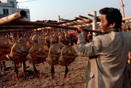 图文:广东南雄村民在制作腊鸭