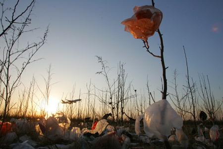 图文:首都机场跑道上塑料袋垃圾满地
