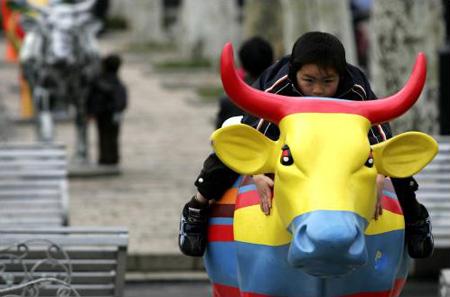 图文:26头彩色牛亮相复兴公园
